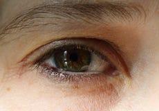 Macrobeeld van menselijk oog stock foto