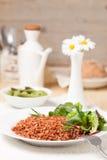 Macrobiotic vegetarian meal Stock Images