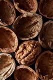 Macroclose-upgewas van okkernotenshells als samenstelling van de voedselachtergrond stock fotografie