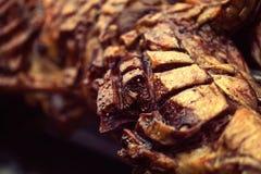 Macrodiedetaillam op vleespen aan perfectie wordt geroosterd die heet klusje gebruiken royalty-vrije stock afbeelding