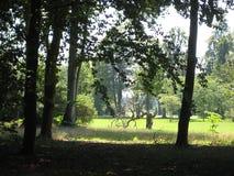 Macrofoto met decoratieve landschapsachtergrond van de zomer Zonnige dag in het oude historische Park van San Susi in Potsdam royalty-vrije stock fotografie