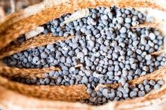 Macrofotografia delle teste del papavero e dei semi di papavero Fotografie Stock Libere da Diritti