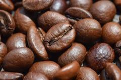 Macrofotografia di bei chicchi di caffè fotografie stock libere da diritti