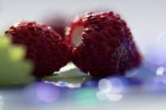 Macrofotografie van wilde aardbeien stock foto