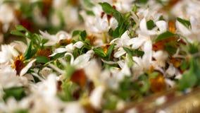 Macrojasmine garland Royalty-vrije Stock Fotografie