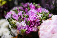 Macrophotography of tender spring purple flowers in a flower shop. Macrophotography of a bouquet consisting of tender spring purple flowers with unopened buds Royalty Free Stock Photo