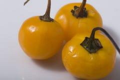 Macrophotography d'un piment de Charapita - piment de cerise Photos libres de droits