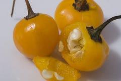 Macrophotography d'un piment de Charapita - piment de cerise Photographie stock libre de droits
