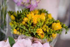Macrophotography of tender spring yellow flowers in a flower shop. Macrophotography of a bouquet consisting of tender spring yellow flowers with unopened buds Royalty Free Stock Photo
