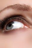 Macroschot van het mooie oog van de vrouw met uiterst lange wimpers Sexy mening, sensuele blik Vrouwelijk oog met lange wimpers Stock Foto