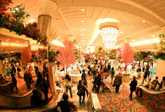 Macy's Flower Show in NYC Royalty Free Stock Photography