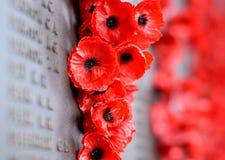 Maczek ściana spisuje imiona wszystkie australijczycy które umierali w usługa wojska Fotografia Stock