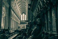 Maczek głowy ławki końcówki b w Salisbury katedrze fotografia royalty free
