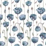 maczek wzór bezszwowy kwiat Obrazy Royalty Free