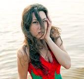 maczka azjatykci piękny smokingowy portret Zdjęcie Royalty Free