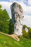 Maczuga Herkulesa, Pologne Images libres de droits