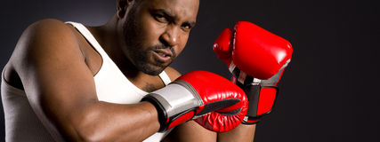 Mad Facial Expression African American Male Boxer Royalty Free Stock Photos