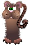 Mad cat. Unmanageable brown mad cat with sharp claws Royalty Free Stock Photos