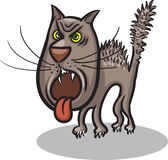 Mad cat Stock Photography