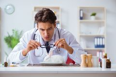 The mad crazy doctor preparing to eat rabbit Stock Photos