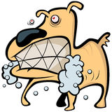 Mad dog. Illustration made in vector stock illustration