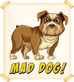 Mad dog. Poster with text vector illustration