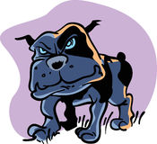 Mad Dog. Vector of mad dog on purple background Stock Photos