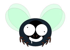 Mad fly cartoon Stock Images