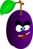 Mad plum Royalty Free Stock Images