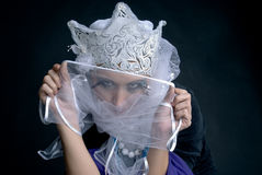 Mad Snow princess from fair tail Royalty Free Stock Photos