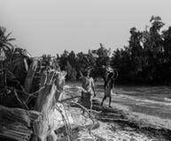 Madagascar Fotografia Stock