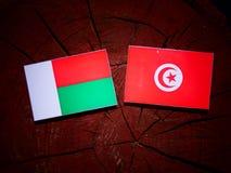 Madagascar flag with Tunisian flag on a tree stump isolated. Madagascar flag with Tunisian flag on a tree stump Royalty Free Stock Photo
