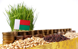 Madagascar flag waving with stack of money coins and piles of wheat Royalty Free Stock Photo