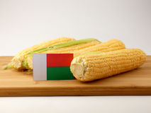 Madagascar flag on a wooden panel with corn isolated on a white. Background Royalty Free Stock Image