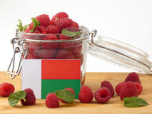 Madagascar flag on a wooden panel with raspberries isolated on a. White background Stock Images