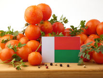 Madagascar flag on a wooden panel with tomatoes isolated on a wh. Ite background Royalty Free Stock Photography