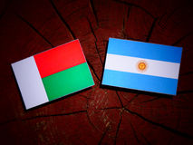 Madagascar flaga z Argentyńską flaga na drzewnym fiszorku odizolowywającym obrazy royalty free