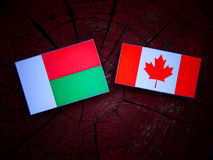 Madagascar flaga z kanadyjczyk flaga na drzewnym fiszorku odizolowywającym fotografia stock