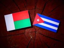 Madagascar flaga z kubańczyk flaga na drzewnym fiszorku zdjęcia royalty free