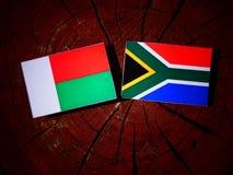 Madagascar flaga z południe - afrykanin flaga na drzewnym fiszorku odizolowywającym Zdjęcie Stock