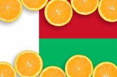 Madagascar flagga i citrusfruktskivahorisontalram arkivbilder