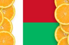 Madagascar flagga i vertikal ram för citrusfruktskivor arkivfoto