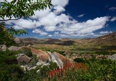 Madagascar Royalty Free Stock Images