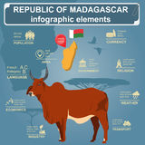 Madagascar infographics, statistical data, sights.  Stock Photos