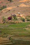 Madagascar landscape Royalty Free Stock Image