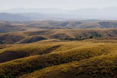 Madagascar landscape. Meadows gently rolling taken from the road from Antananarivo to Antsirabe Royalty Free Stock Images