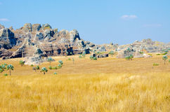 Madagascar landscape savanna desert Stock Photo