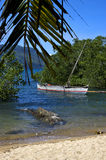 Madagascar nosy be rock  branch boat palm lagoon and coastline Stock Images