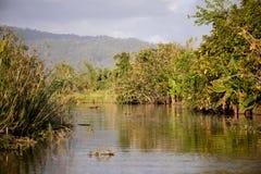 Madagascar traditional river landscape Stock Photos