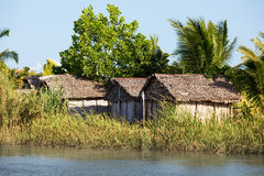Madagascar traditional rural landscape with hut Stock Images